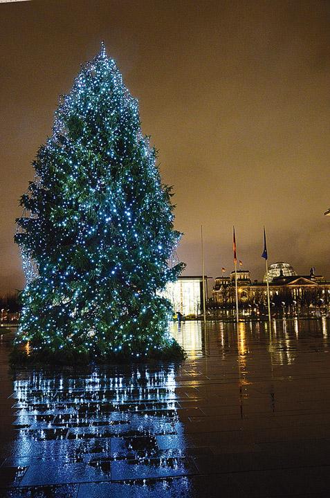 weihnachtsbaum f r angela merkel kommt aus hessen aus der region. Black Bedroom Furniture Sets. Home Design Ideas
